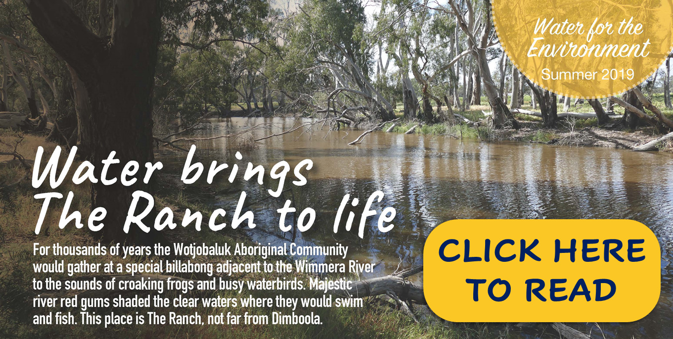 Wimmera CMA Summer Update