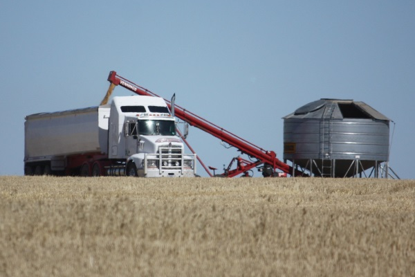Grain Harvest Management Scheme to operate again this season