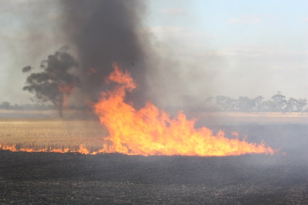 Fire Danger Period to end in parts of the Wimmera