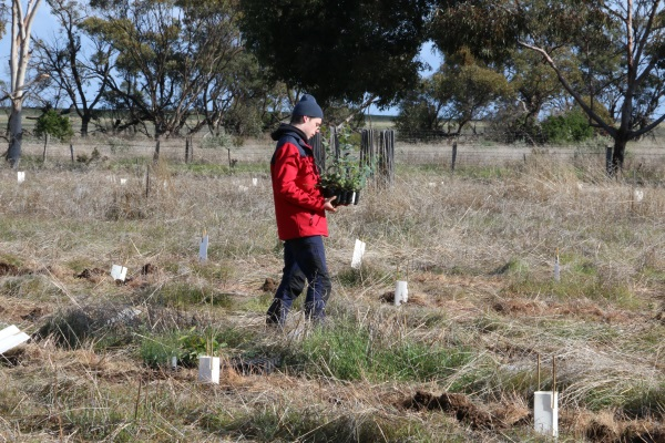Junior Landcare grants now open