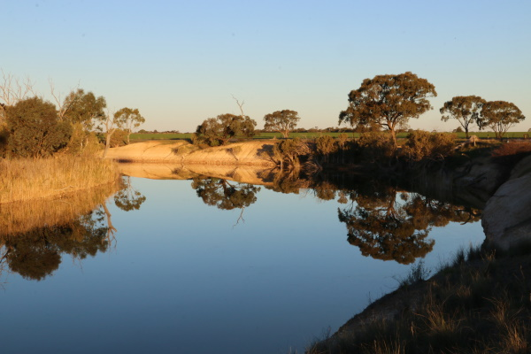 Wimmera River Revegetation Project