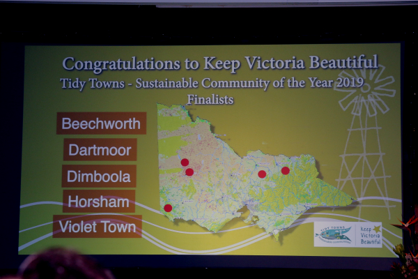 2020 Sustainable Communities - Tidy Towns nominations
